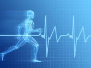 autodisciplina sport e business